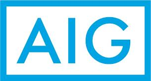 AIG, Insurance Approved, Birchall Restoration, Cleaning and Restoration Firm, Renovations and Remodels, Damage Specialists