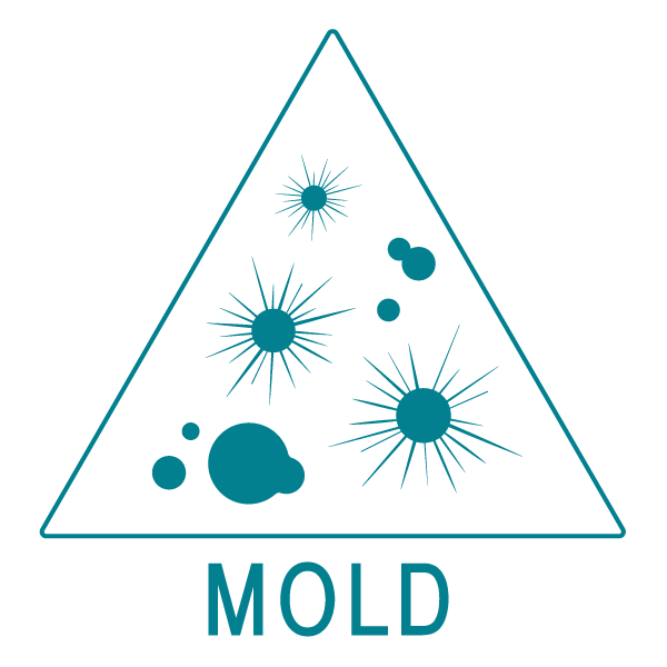 Mold Growth, Mold Control, Mold Cleanup, Birchall Restoration